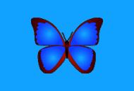 小巧精悍的数码照片浏览器 | bkViewer(6.0f)
